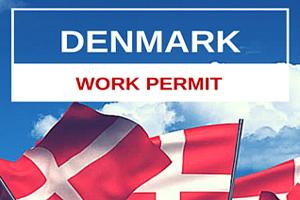 پرداخت ویزای دانمارک | تهران کردیت کارت